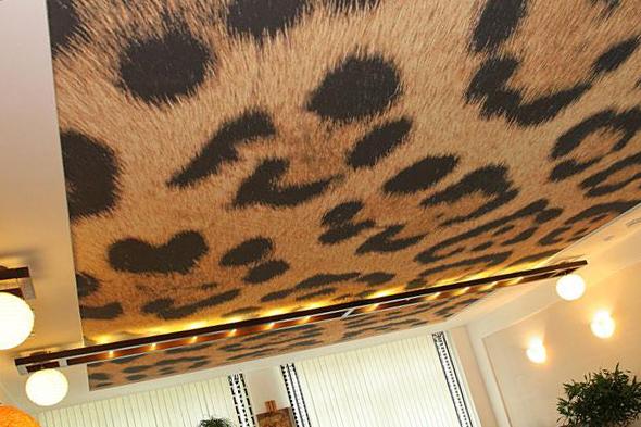 Комбинированные натяжные потолки в разных стилях